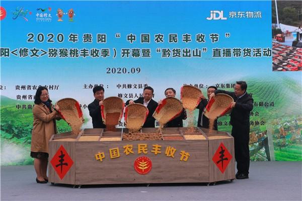 """2020年贵阳""""中国农民丰收节""""贵阳 修文 猕猴桃丰收季 开幕 社会 第1张"""