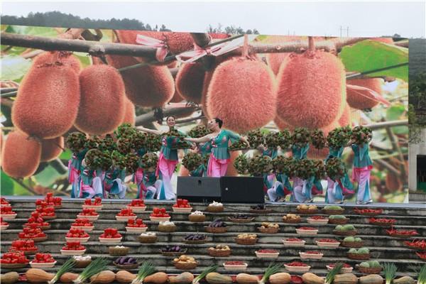 """2020年贵阳""""中国农民丰收节""""贵阳 修文 猕猴桃丰收季 开幕 社会 第6张"""