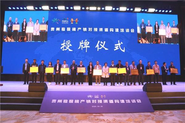 """2020年贵阳""""中国农民丰收节""""贵阳 修文 猕猴桃丰收季 开幕 社会 第4张"""