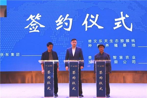 """2020年贵阳""""中国农民丰收节""""贵阳 修文 猕猴桃丰收季 开幕 社会 第3张"""