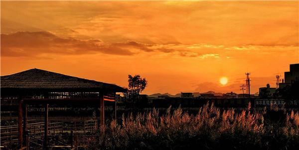 首届毛肚火锅节暨贵州原创音乐会将于11月9日在惠水县妙田吉市生态农场举行 旅游 第4张