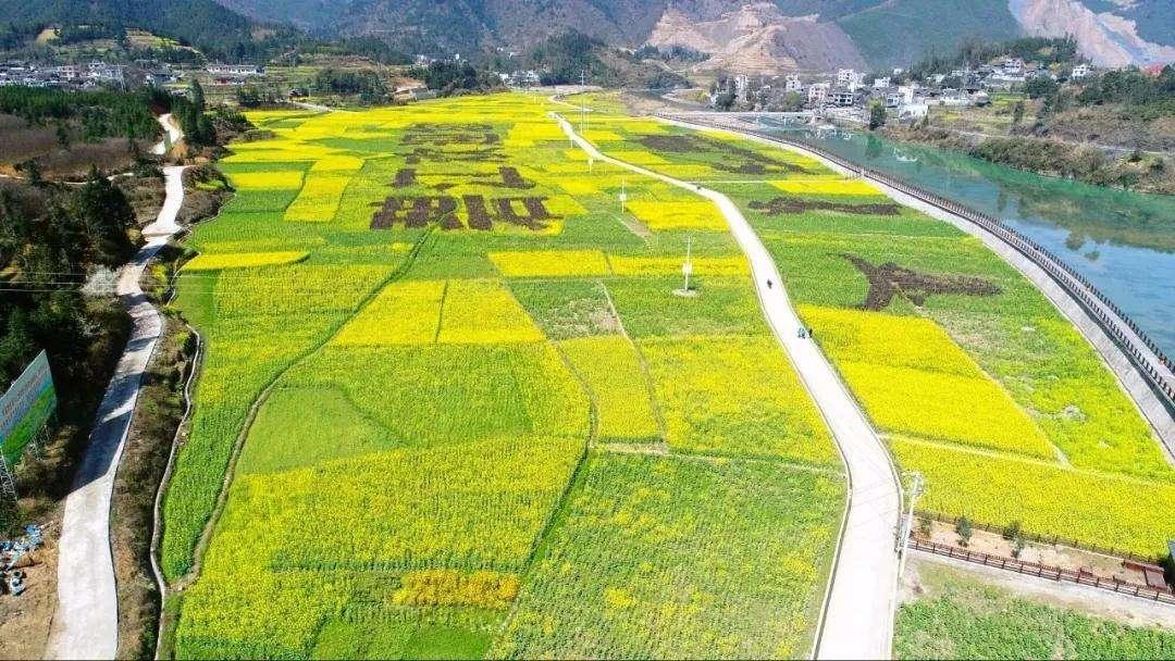 【综合】贵州春天的七种颜色 旅游 第1张