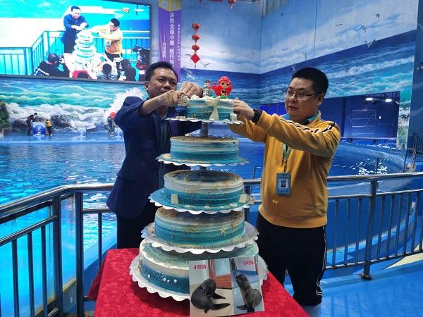 中秋国庆双节将至 贵州极地海洋世界海狮宝贝邀你来一起耍! 旅游 第4张